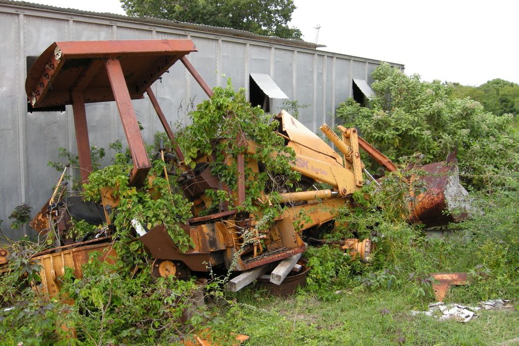 Overgrown Bulldozer