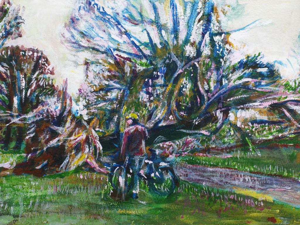 Tree Bike Painting Prospect Park Lanscape Noel Hefele
