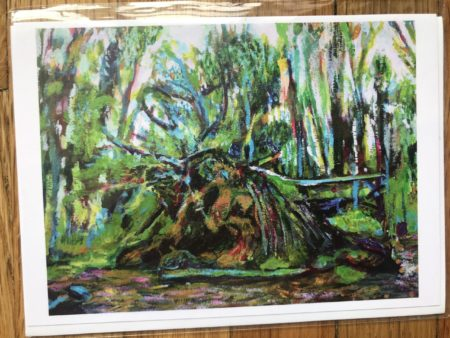 Prospect Park Fallen Tree Greeting Card