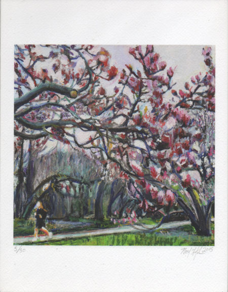 Giclee of Blossoms in Prospect Park, Noel Hefele