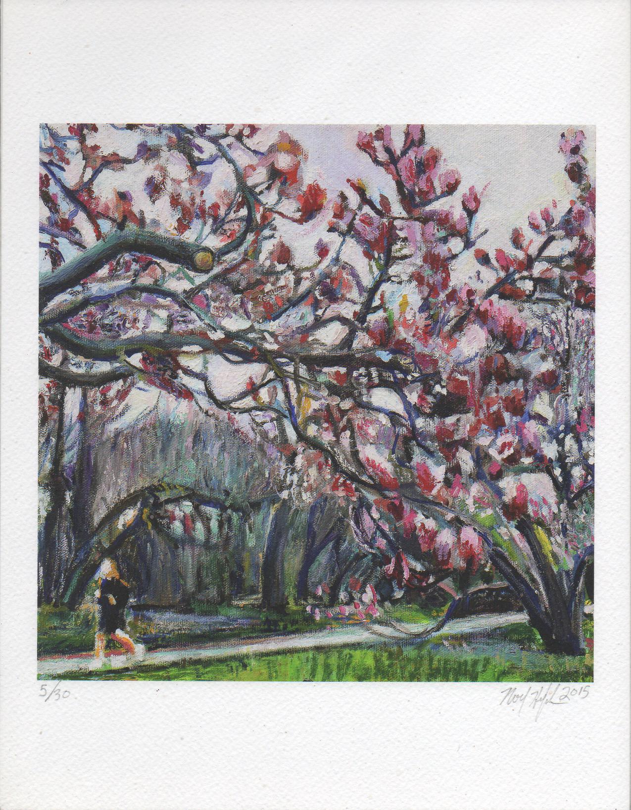 Giclee of Blossoms in Prospect Park, Noel Hefele