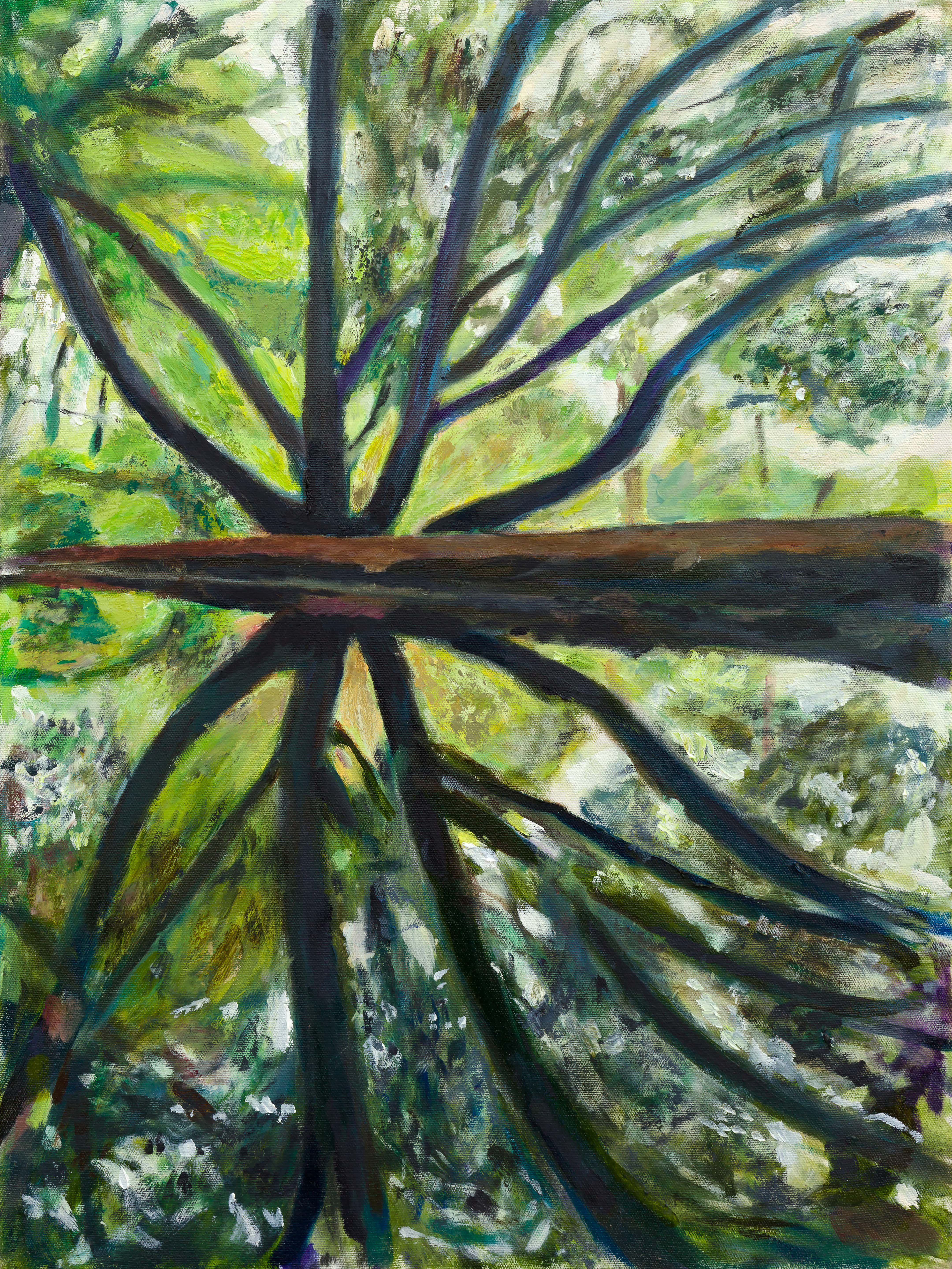 oil painting of an ironwood tree in Prospect Park by Noel Hefele